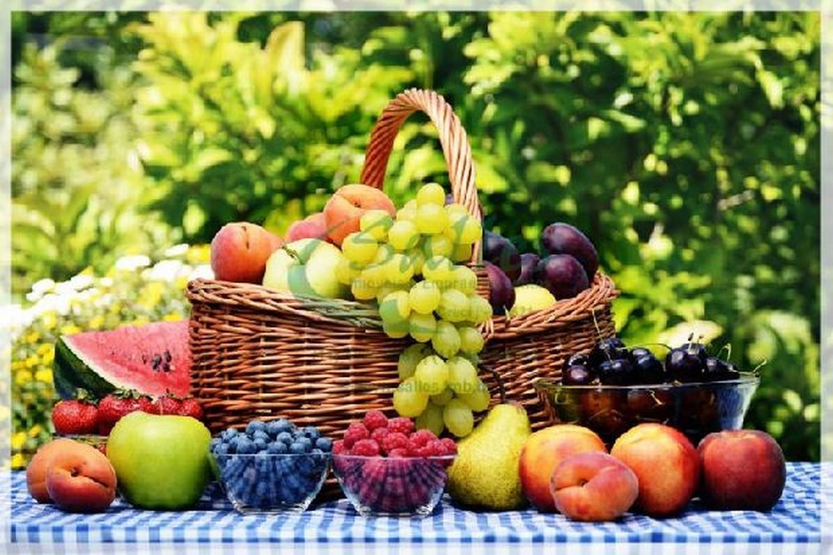 Circuito das Frutas