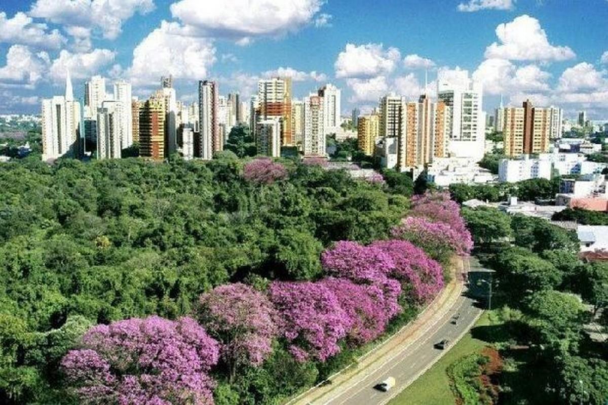 Gastronomia - Maringá - PR - Guia do Turismo Brasil