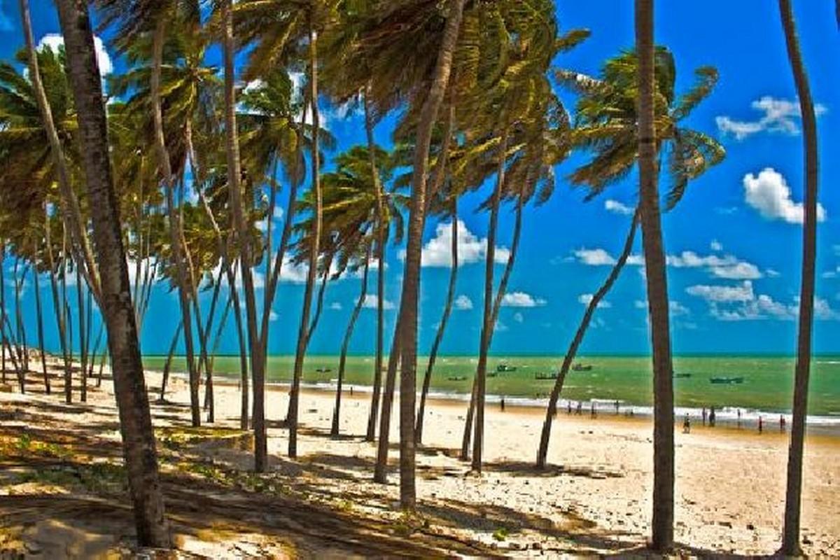 Resultado de imagem para Praia do Rio do Fogo rn
