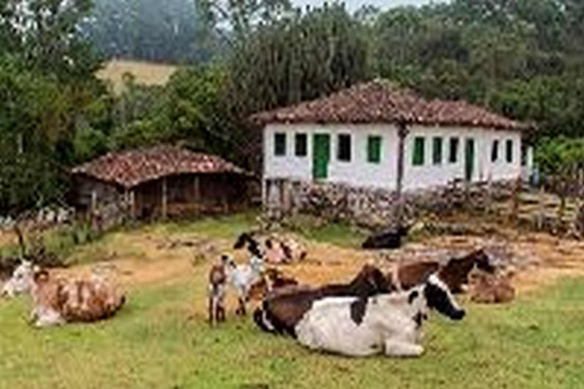 Circuito Simples : Gonçalves mg guia do turismo brasil