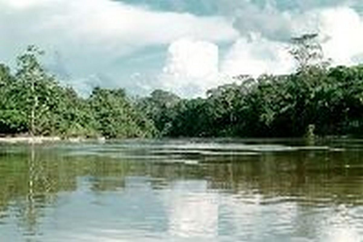 Rio Mucajaí - FOTO: Floresta Nacional de Roraima - Taylor Nunes